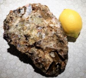 特大岩牡蠣