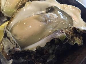豊後岩牡蠣